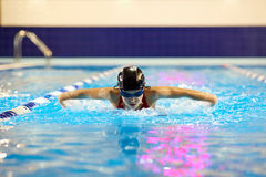Swimmer girl teenager in the pool swims butterfly inside. Royalty Free Stock Photos