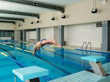 Swimmer jumping from starting block Royalty Free Stock Image