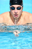 Swimmer - man swimming breaststroke Stock Photo