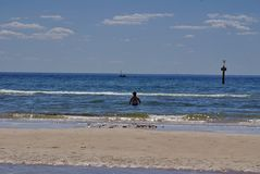 Bather in the ocean in Frankston. Swimmer in the Pacific Ocean, with the beach in the foreground, in Frankston, Australia Royalty Free Stock Image