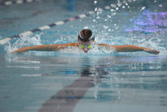Swimmer is participating in the competition Royalty Free Stock Image