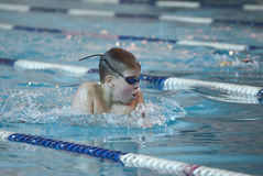 Swimmer is participating in the competition Royalty Free Stock Photography