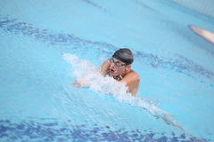 Swimmer  performing the breaststroke Stock Images