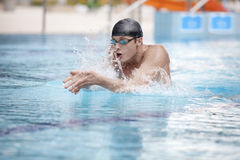 Swimmer performing the breaststroke in sport pool Royalty Free Stock Photo