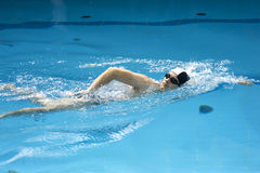 Swimmer performing the crawl Stock Images