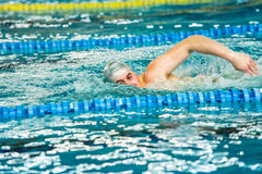Swimmer performing front crawl freestyle stroke in indoor pool. Stock Photography