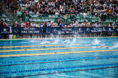 A swimmer. A player of swimming in a round of the national trophy Italian memorial Mirko Lagana Royalty Free Stock Photos