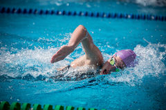 A swimmer. A player of swimming in a round of the national trophy Italian memorial Mirko Lagana Stock Images