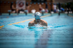 A swimmer. A player of swimming in a round of the national trophy Italian memorial Mirko Lagana Stock Photo