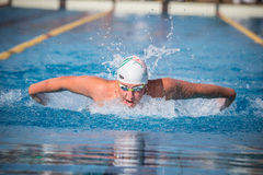 A swimmer. A player of swimming in a round of the national trophy Italian memorial Mirko Lagana Stock Photos