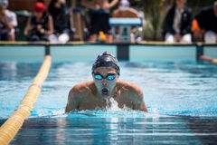 A swimmer. A player of swimming in a round of the national trophy Italian memorial Mirko Lagana Stock Image