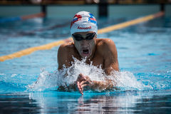 A swimmer. A player of swimming in a round of the national trophy Italian memorial Mirko Lagana Royalty Free Stock Image