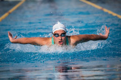 A swimmer. A player of swimming in a round of the national trophy Italian memorial Mirko Lagana Royalty Free Stock Photography