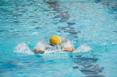 Swimmer plunge in pool. An athlete trains in the pool water competition stock photography