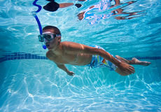 Swimmer in Pool Underwater Royalty Free Stock Photography