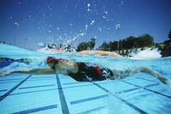 Swimmer Practicing Before A Competition Royalty Free Stock Photography