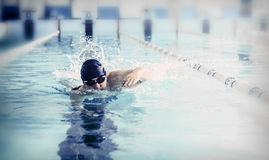 Swimmer Stock Images