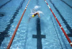 Swimmer racing to the finish. Male swimmer doing the crawl Stock Photo