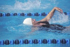 Swimmer in Senior Olympic Swimming Competition Royalty Free Stock Photography