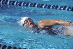 Swimmer in Senior Olympic Swimming Competition Stock Photo