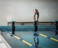 Swimmer standing on starting block Stock Image