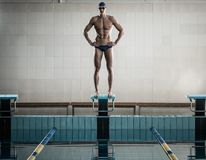 Swimmer standing on starting block Royalty Free Stock Images