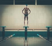 Swimmer standing on starting block Stock Image