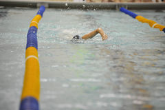 Swimmer in swimmers lane. Swimmer competing in lane during swim meet competition Royalty Free Stock Photo