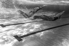 Swimmer Stock Photos