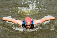 Swimmer is swimming butterfly Stock Photography