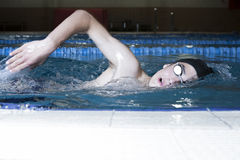 Swimmer swimming front crawl Stock Images