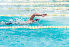 Swimmer swimming front crawl in the pool Royalty Free Stock Photos