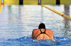 Swimmer in the swimming pool Royalty Free Stock Photography