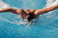 Swimmer in swimming pool. Photo of a swimmer doing spring in swimming pool Stock Photography