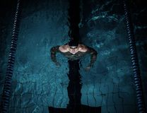 Swimmer in swimming pool Royalty Free Stock Photo