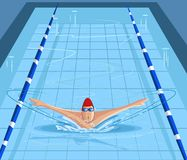 Swimmer swimming in pool. Cartoon style swimmer swimming in pool in vector Royalty Free Stock Image