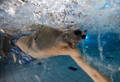 Swimmer at the swimming pool. Stock Photo