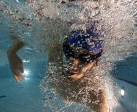 Swimmer at the swimming pool. Royalty Free Stock Photos