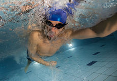Swimmer at the swimming pool. Royalty Free Stock Photography