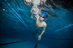 Swimmer at the swimming pool. Male swimmer at the swimming pool. Underwater photo Royalty Free Stock Photos