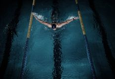 Swimmer in swimming pool Stock Image