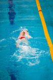 Swimmer swims Stock Photography