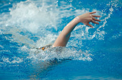 Swimmer swims Stock Photos