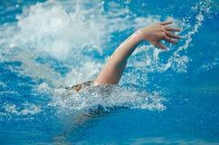 Swimmer swims Stock Photos