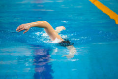 A swimmer swims Stock Photography