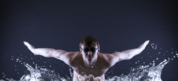 Swimmer swims. Royalty Free Stock Photography