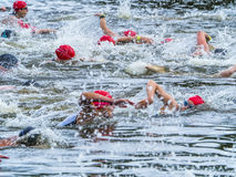 Swimmer in a triathlon competition Royalty Free Stock Image