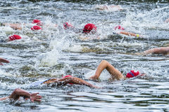 Swimmer in a triathlon competition Royalty Free Stock Photos