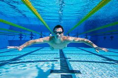 Swimmer Underwater. Swimmer Floating in the Pool, Underwater View Royalty Free Stock Image