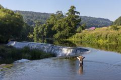 Swimmer at Warleigh Weir in Somerset royalty free stock photos